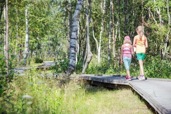 Lankkupolku Vihaslahdessa Kalajoella. Kuva: Kimmo Rampanen